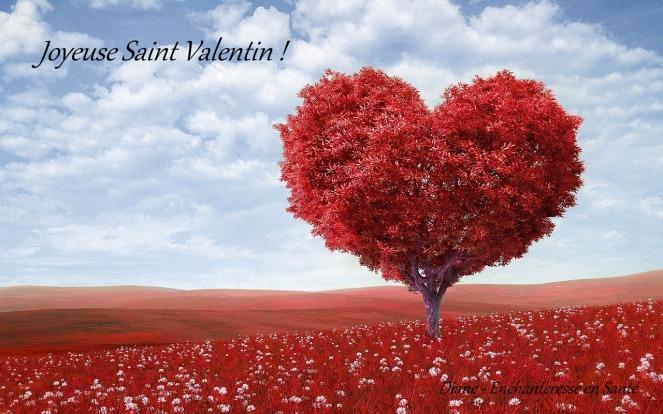 saint-valentin-7