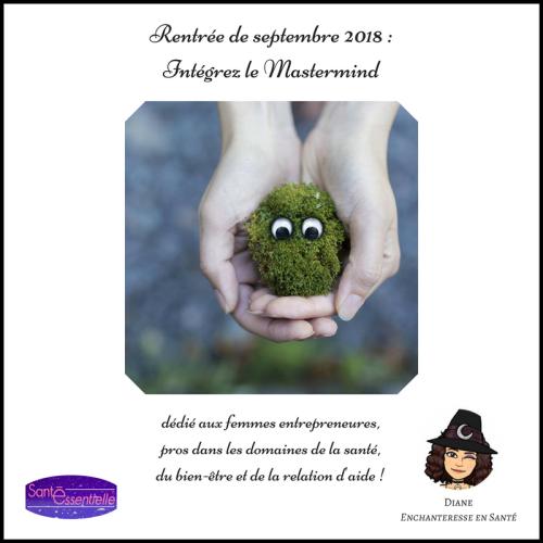 sante-essentielle-enchanteresse-en-sante-mastermind-rentree-septembre-2018