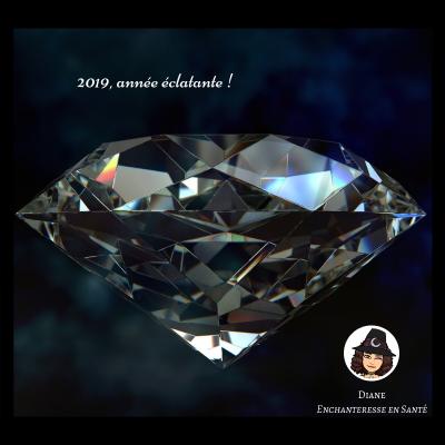 2019 année éclatante 1 - Diane - Enchanteresse en Santé