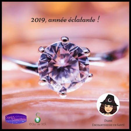 2019 année éclatante - Diane - Enchanteresse en Santé