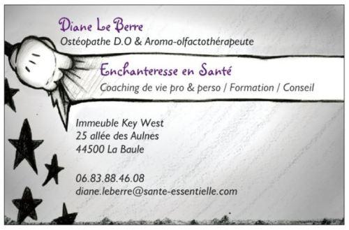 Cdv - Diane - Enchanteresse en Santé - recto