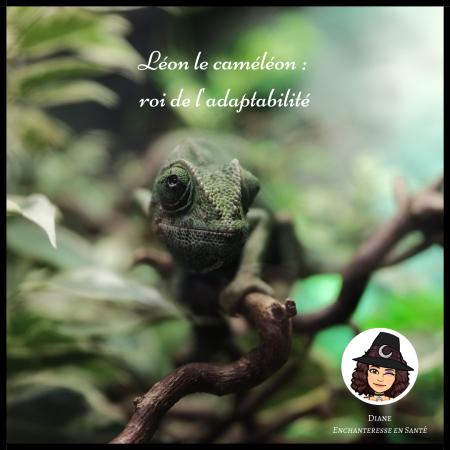 Léon le caméléon _ roi de l'adaptabilité - Diane Enchanteresse en Santé