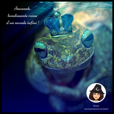 Savanah, bondissante reine d'un monde infini - Diane Enchanteresse en Santé
