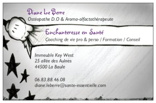 diane-enchanteresse-en-sante-cdv-recto