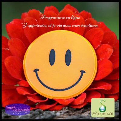 Programme en ligne _J'apprivoise et je vis avec mes émotions_ - Santé Essentielle - Eau de Soi