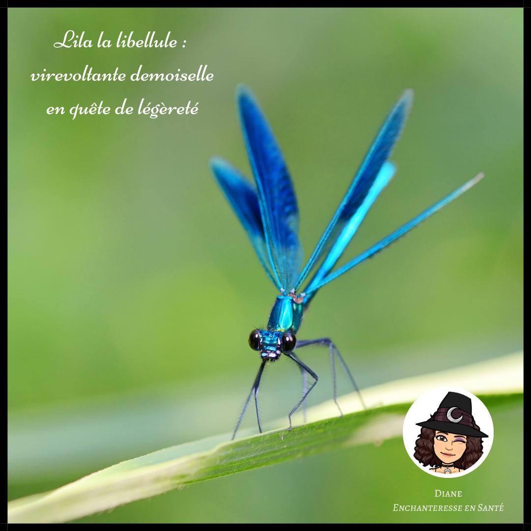 Lila la libellule _ virevoltante demoiselle en quête de légèreté - Diane Enchanteresse en Santé